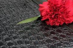 一支红色康乃馨和笔记本 免版税图库摄影