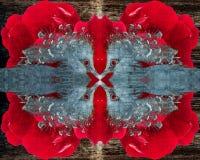 一有顶饰pidgeon的摘要在一朵红色玫瑰的构造了背景 库存图片