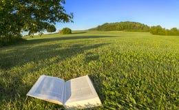 读一本书在自然的一个公园,点看法射击 在巴伐利亚,德国 库存图片