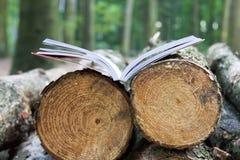 一本开放书在击倒的树说谎,保存树-读的e书 库存照片