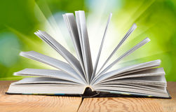 一本开放书的图象在一个绿色背景特写镜头的 免版税库存图片