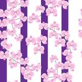 一朵兰花的精美,桃红色枝杈在白色背景的与宽淡紫色小条 无缝的模式 能为织品使用 皇族释放例证