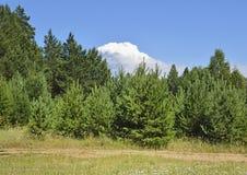 一朵大云彩的看法 库存照片