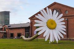 一朵巨型雏菊在Foru前面的Jani Rattya和安蒂Stockell 库存图片