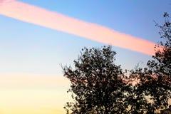 一朵惊人的桃红色条纹云彩 免版税库存照片