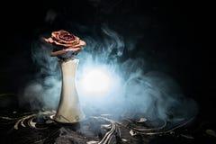 一朵枯萎的玫瑰符号化失去的爱,离婚,或者一个坏关系,死者在与烟的黑暗的背景上升了 库存照片