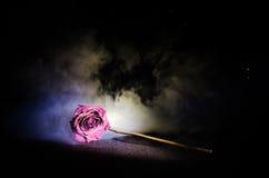 一朵枯萎的玫瑰符号化失去的爱,离婚,或者一个坏关系,死者在黑暗的背景上升了 免版税库存照片