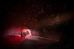 一朵枯萎的玫瑰符号化失去的爱,离婚,或者一个坏关系,死者在黑暗的背景上升了 图库摄影