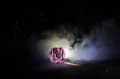 一朵枯萎的玫瑰符号化失去的爱,离婚,或者一个坏关系,死者在黑暗的背景上升了 库存图片