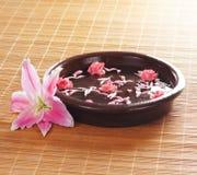 一朵棕色陶瓷碗和桃红色花 库存图片