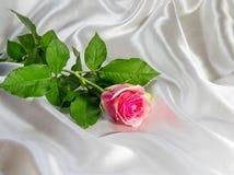 一朵玫瑰的抽象在一件丝织物的 库存图片