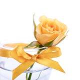 一朵玫瑰的黄色花在一块玻璃的与弓。 免版税图库摄影