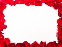 浪漫红色玫瑰花瓣框架 图库摄影