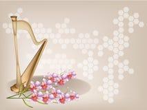 一朵美丽的竖琴和兰花在布朗背景 免版税库存照片