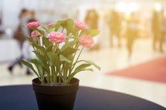 一朵美丽的装饰花的特写镜头在一张桌上的在busin 免版税库存照片