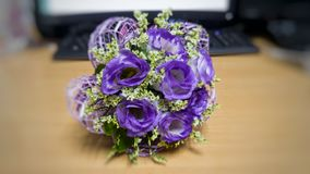 一朵美丽的紫罗兰色花 库存图片