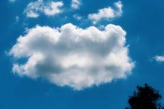 一朵蓬松云彩的照片 免版税库存照片