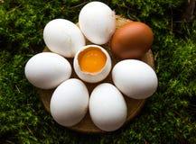 以一朵雏菊的形式未加工的鸡蛋在青苔背景  免版税库存照片