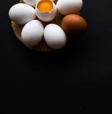 以一朵雏菊的形式鸡蛋在黑暗的背景 库存图片