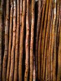 一束与阴影的棕色竹子可以使用作为棕色背景 图库摄影