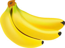 一束在白色背景的香蕉 免版税库存图片