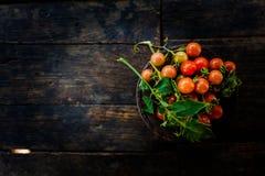 一束在老黑暗的木地板上的新鲜的红色蕃茄 免版税库存照片
