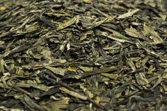 一束干绿色茶叶 库存照片