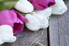 一束新鲜的郁金香在土气木背景开花 库存照片