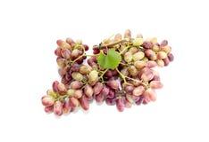 一束桃红色葡萄 免版税图库摄影