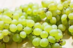 一束甜绿色无核的葡萄 库存图片