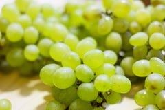 一束甜绿色无核的葡萄 免版税库存照片