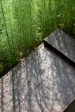 一束绿色植物投下了在棕色长凳的苍白光 库存照片