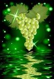 一束葡萄的反射在水中 免版税库存图片