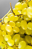 一束葡萄的特写镜头 免版税库存照片