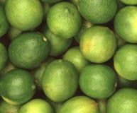 一束鲜绿色的石灰 免版税库存图片
