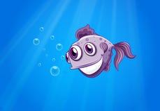 一条三目的鱼 免版税库存照片