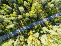 一条乡下公路的鸟瞰图在有移动的汽车的森林里  豆杆 免版税库存图片