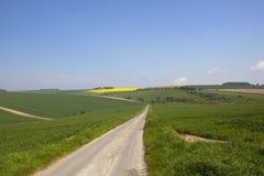 一条乡下公路通过绿色领域春天 库存图片