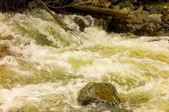 一条产金的小河在北不列颠哥伦比亚省 库存照片