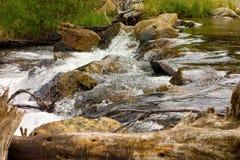 一条产金的小河在北不列颠哥伦比亚省 免版税图库摄影