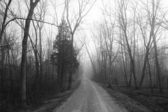 一条偏僻的有雾的农村路的黑白照片 库存图片