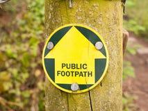 一条公开小径签到带路在足迹的森林 图库摄影