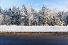 一条农村路的肩膀在冬天 库存照片