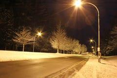 一条冬天路在晚上 库存图片
