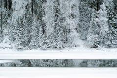 一条冻河的树木繁茂的冬天海岸有开阔水域小条的在冰中的 免版税图库摄影