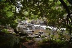 一条可爱的自然被构筑的河 库存照片