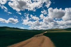 一条含沙路通过领域 图库摄影