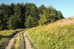 一条土路在小山和森林夏天之间环境美化 库存照片