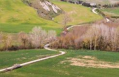 一条土路在托斯卡纳 免版税图库摄影