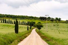 一条土路的全景在Val d& x27; Orcia 库存图片